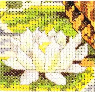 Фрагмент с белой лилией